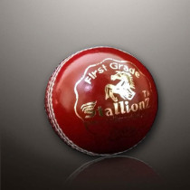 Leather/Hard Red Cricket Balls