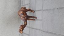 carved Camel