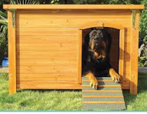 Dog house with AC / Light, Big / Small Dog House, Cat House , CALL 050-2097517
