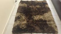 Carpet/rug going for cheap