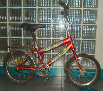 2 Girls Bicycle, 1 Bicycle is AED 200 and 2 is AED 300