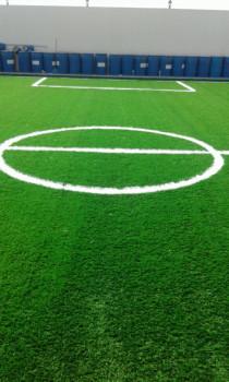 Artificial grass 0509829399
