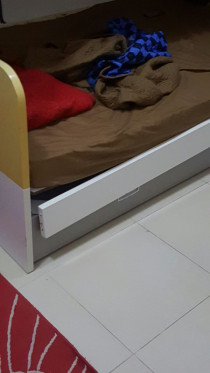 Carpenter for bed and sofa repair