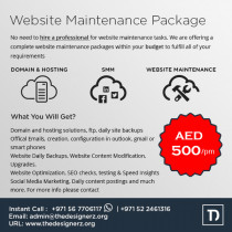 Website Design and Maintenance Package