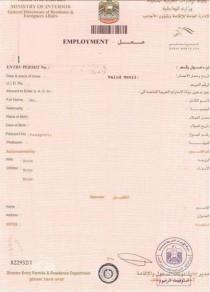 PARTNER AND FREELANCE VISA FOR MALE/ FEMALE