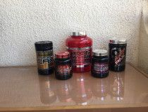 Gym membership and Protein Supplements