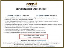 EXPERIENCED IT SALES PERSON