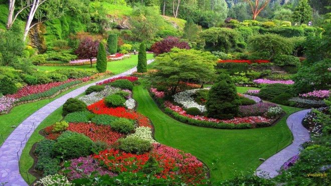 Landscaping and gardening services in Abu Dhabi