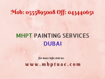 Professional Wall Painting Services for Villa & Building (interior and exterior)