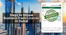 Provide Family Visa For(wife,kids)New Born Baby Visa,Visa Renewal,Ejari,Dubai,Sh