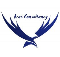 Accounting System Redesign, Business Activity Monitoring - Services