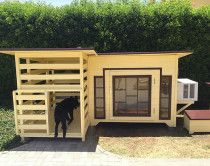 Brand new dogs and cats house for sale with AC call me 0503680861