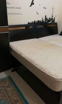Single Bed Queen Size