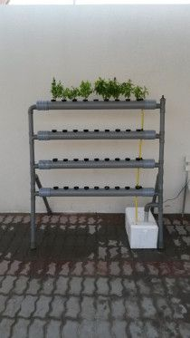 Single sided hydroponic system