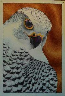 White Falcon Bird Original Hand Painting – Acrylic on Canvas.
