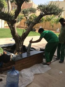 Just call us becaus We are providing best services in Gardening and Landscaping