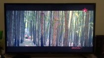 Samsung LED 40 inch 12 Months old perfect Condition inside out