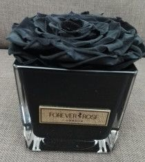 Forever Rose London. The popular roses that last forever.